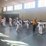 Begin TKD seizoen